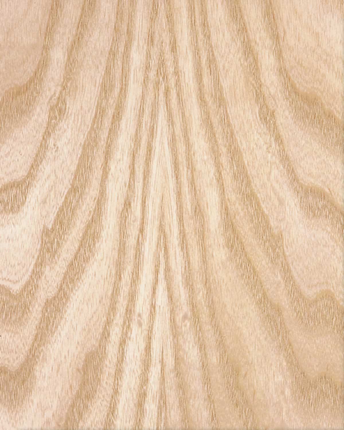 White Ash Wood Grain ~ Ambienta architectural solutions wood